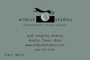 Wildcat Studios